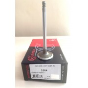 04284042, Впускной клапан  TCD 2012 L4 2V, TCD 2012 L6 2V