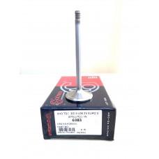 04285263, Впускной клапан TCD 2013 L4 2V, TCD 2013 L6 2V